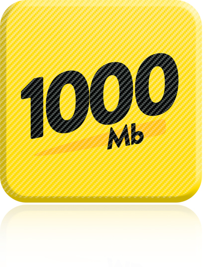 Guaranteed 900Mb Download (Max. 1000Mb) & 300Mb Upload