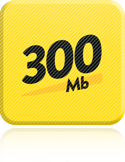 Guaranteed 300Mb Download & 100Mb Upload